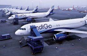 Indigo Airlines, Airbus, Boeing, Indigo, Airlines, Indigo Airlines Food, India, Indigo Flight, Indigo (Airline), Indigo Airlines Success Story, Indigo Trip Report, Indigo Airlines India, Indigo Plane, Indigo Airlines Owner, About Indigo Airlines, Indigo Airlines Story, NO-FRILLS CARRIER, INDIGO, A320, AIRBUS, A320, AIRLINE, SPICEJET, AIRBUS, INDIGO AIRLINES, LOW-BUDGET INDIGO AIRLINES, COMPANIES